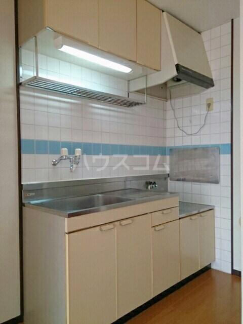 エルディム小久保 02010号室のキッチン