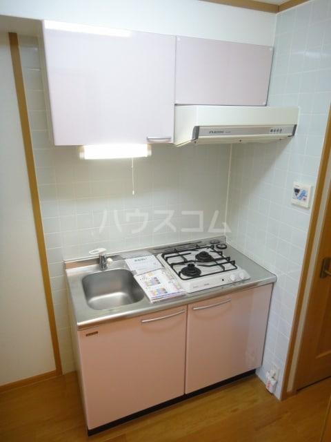 ラゼル山王Ⅱ 02030号室のキッチン