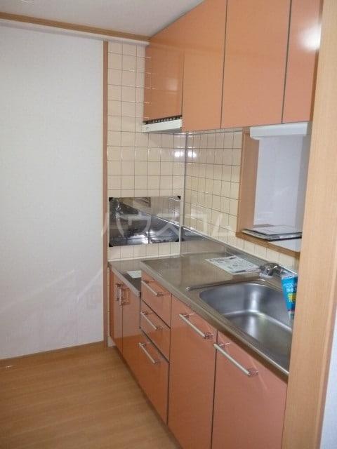アネックス稲永駅前 07070号室のキッチン