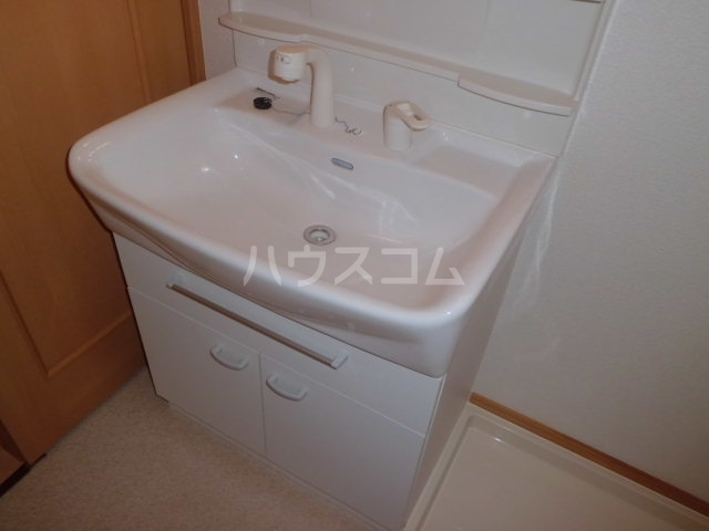 ラ・テール 01020号室の洗面所