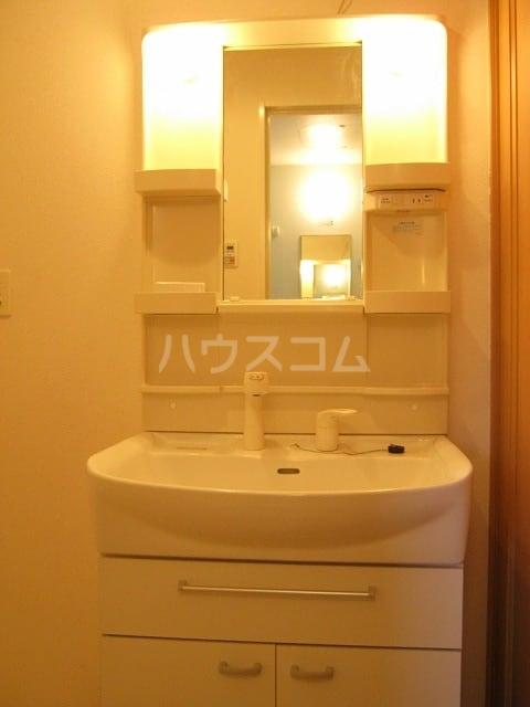 サウス カーサ セレノB 01030号室の洗面所