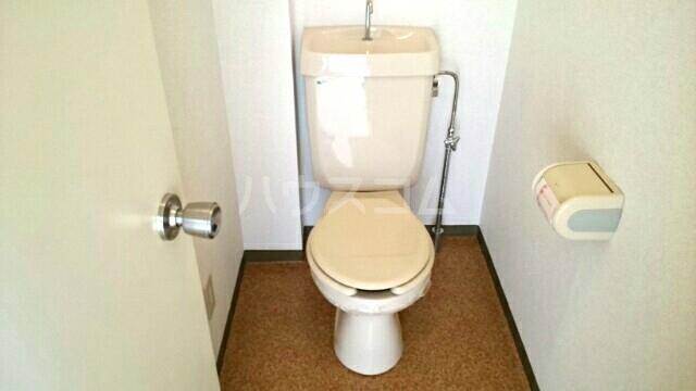 パームキャッスル 01010号室のトイレ