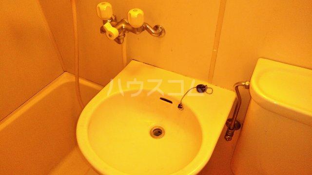 メゾン生麦 501号室の洗面所