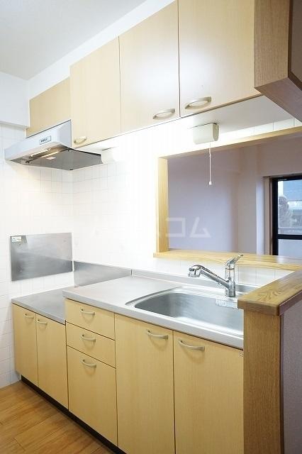 エル・ファーレA 02030号室のキッチン