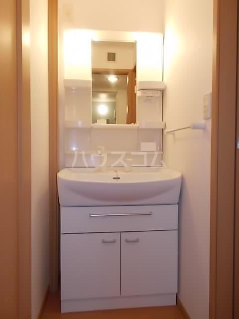 エテルノA 01020号室の洗面所