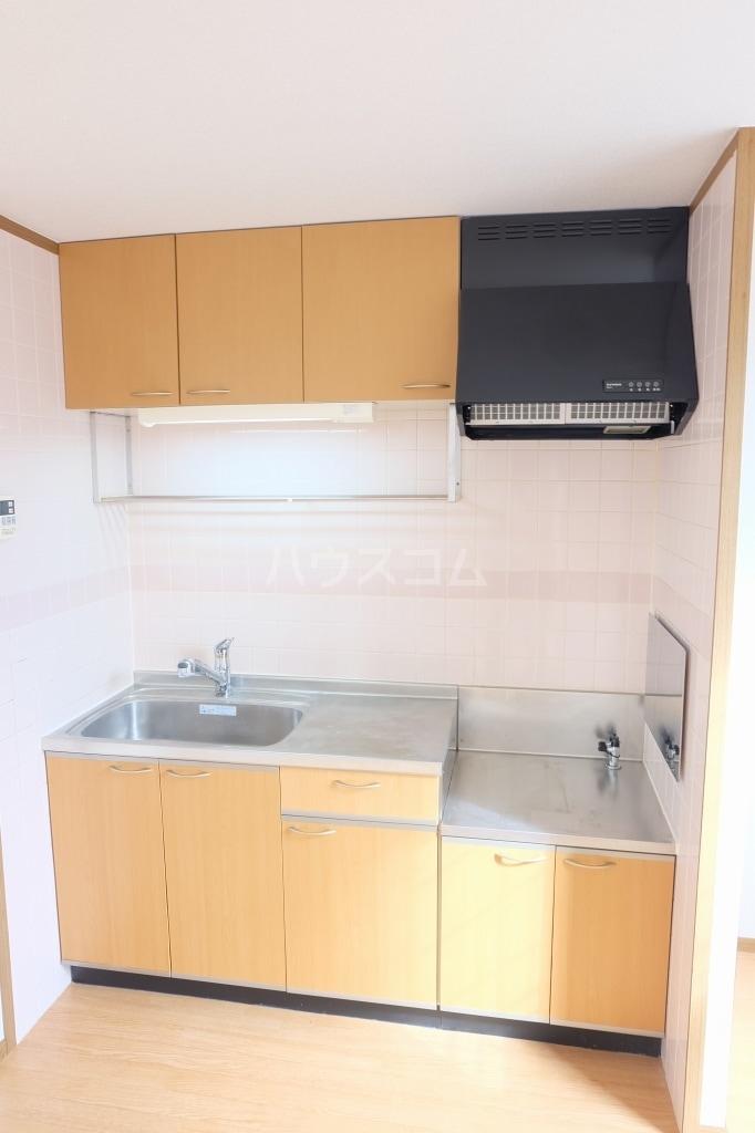 エヴァーグリーン 02010号室のキッチン