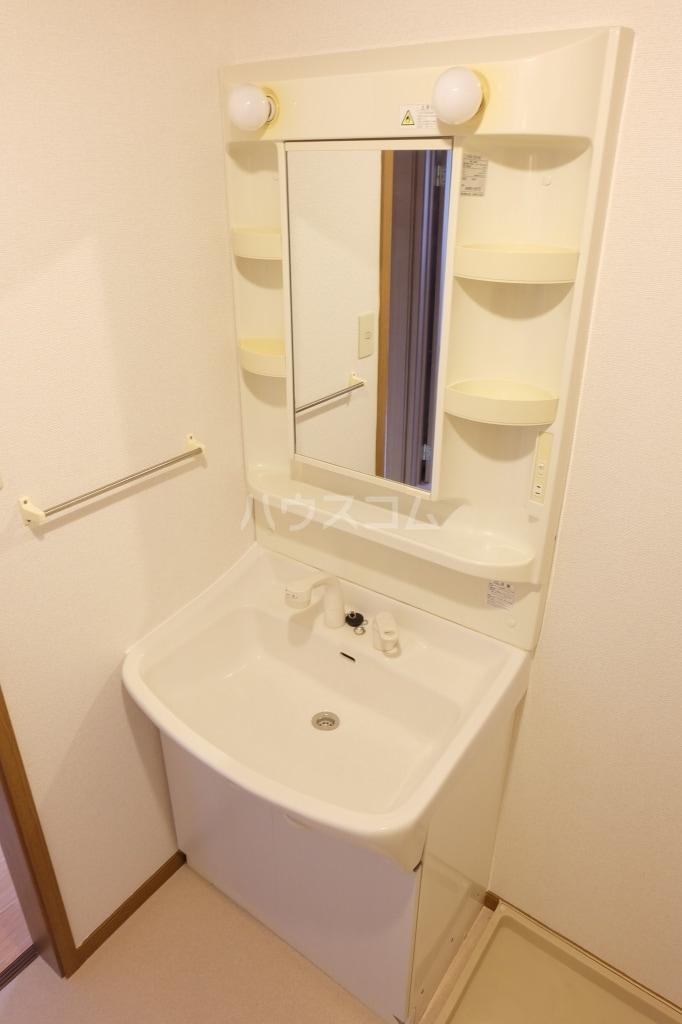 エヴァーグリーン 02010号室の洗面所