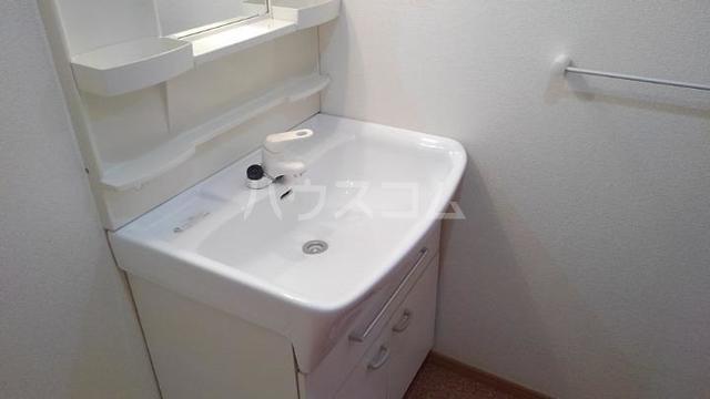 ソレアード・カーサⅡ 01010号室の洗面所