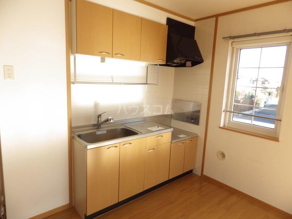 ソルフィー D 02030号室のキッチン
