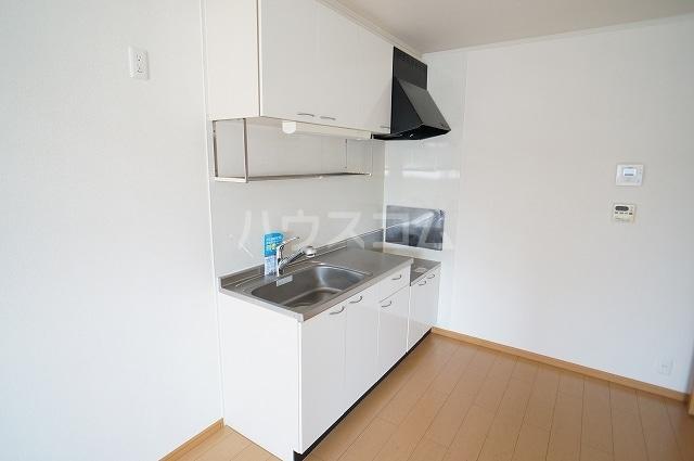 カサブランカB 02010号室のキッチン