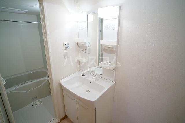カサブランカB 02010号室の洗面所