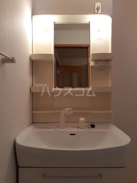パークサイド仲原 01020号室の洗面所
