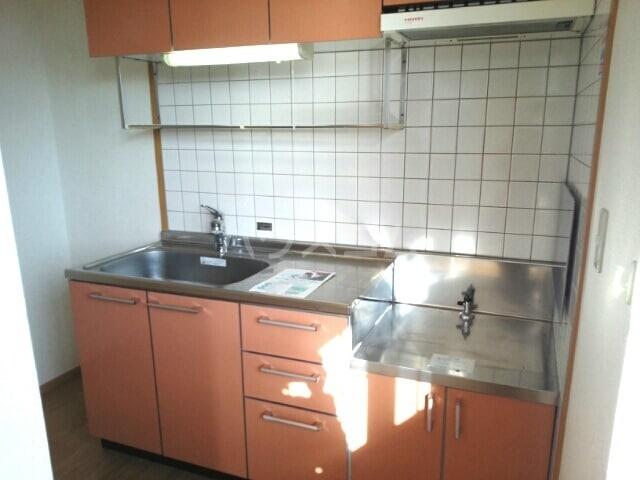 スカイヒルズC 02010号室のキッチン