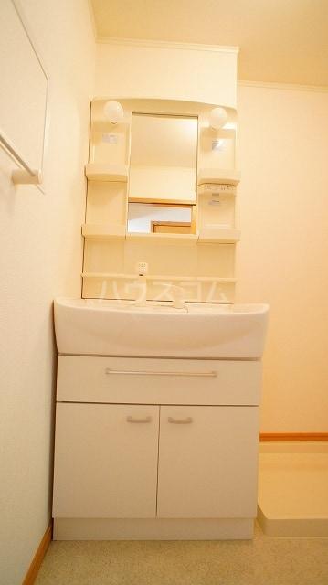 グリーンパークヒルズB 02030号室の洗面所