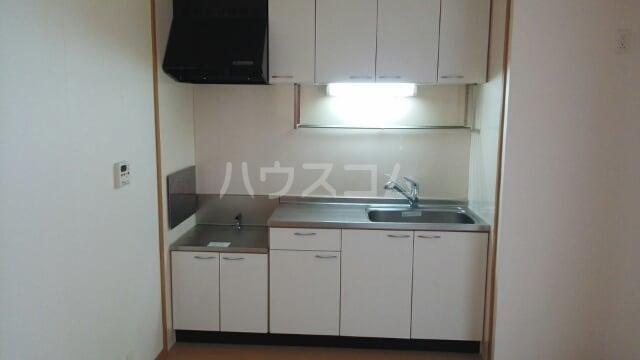 リリー ベル 01020号室のキッチン