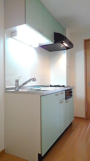 プレ・アビタシオン春日部Ⅰ 01020号室のキッチン