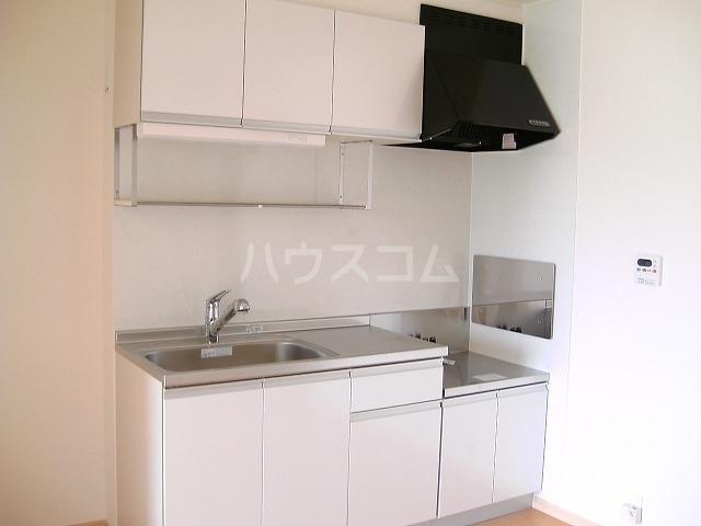 ニューエレガント藤 A 01010号室のキッチン