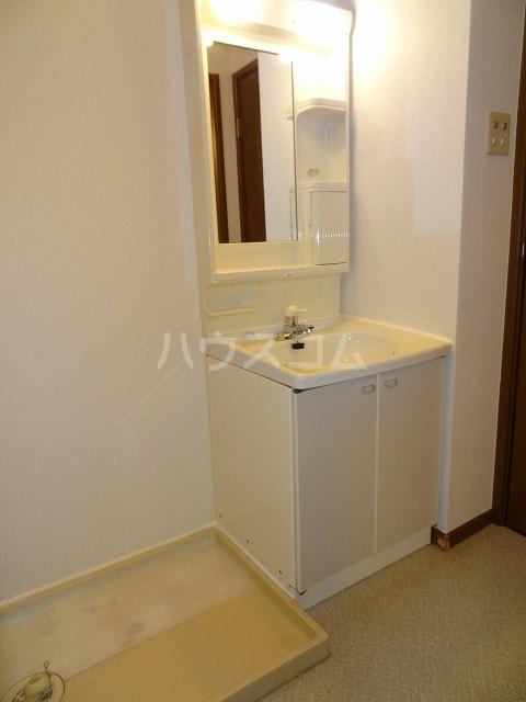 メゾン若山 01010号室の洗面所