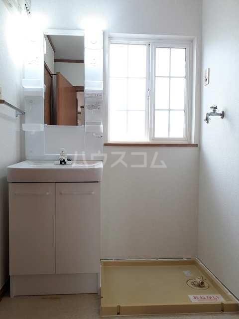 クレセント 02030号室の洗面所