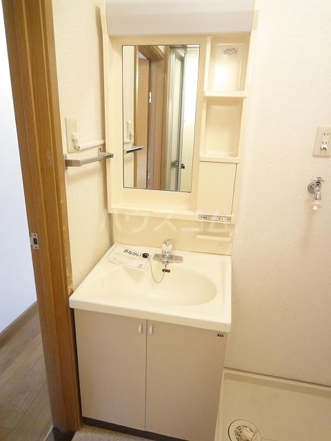 ロイヤルヒルズ 01020号室の洗面所
