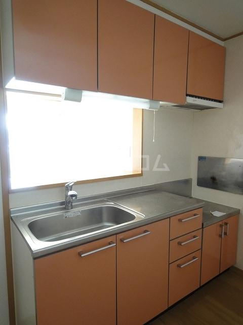 プラシ-ド・フィルⅡ 01030号室のキッチン