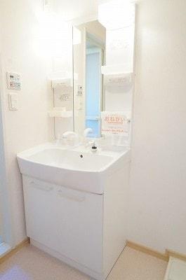 カーザ・フェリース Ⅰ 02020号室の洗面所