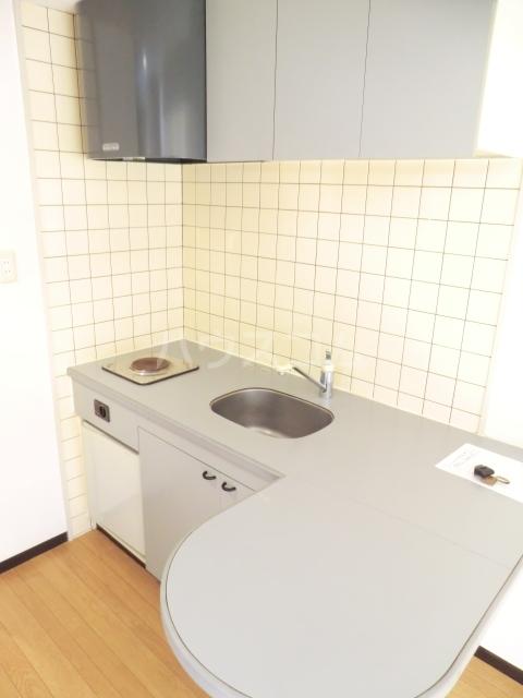 グレイス坂下 205号室のキッチン
