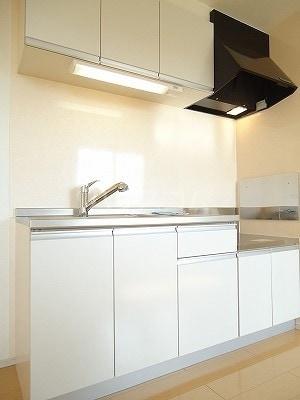 エレナメゾンB 02030号室のキッチン