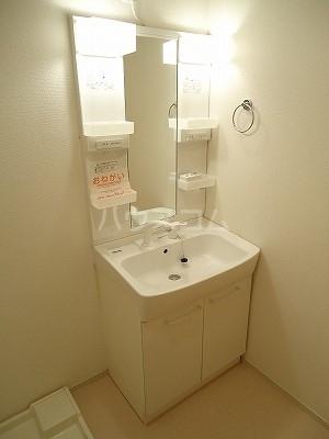 エレナメゾンB 02030号室の洗面所