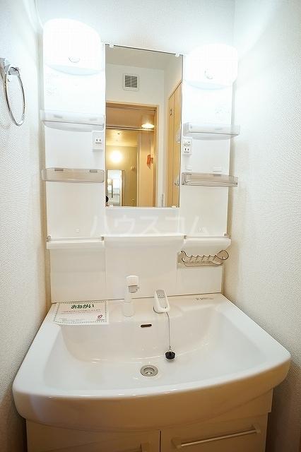 エレガンテ 01020号室の洗面所