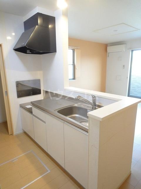 ハオスエーデルワイス Ⅲ 01020号室のキッチン