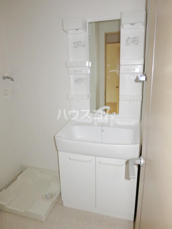 ラリック・ヒルB 01020号室の洗面所
