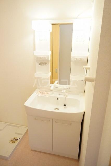 エム・グランツ B 01010号室の洗面所