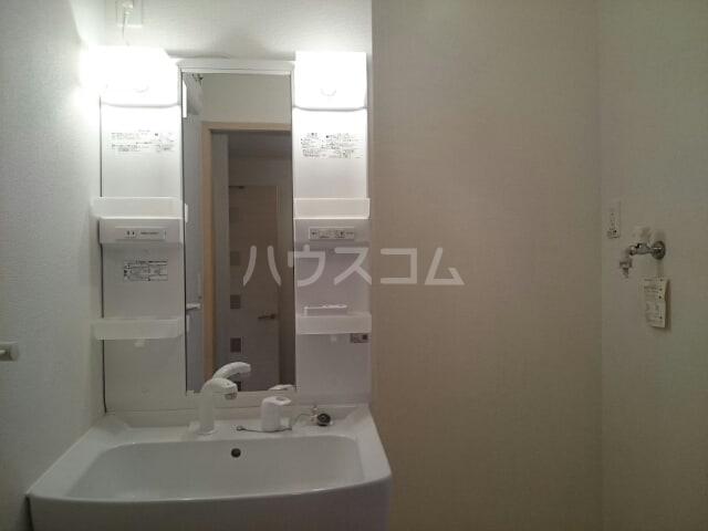 ボナール 01060号室の洗面所
