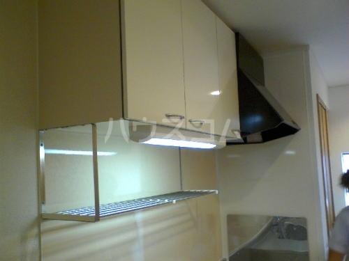 グランディール藤川 01020号室のキッチン
