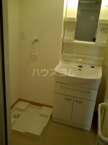 グランディール藤川 01020号室の洗面所