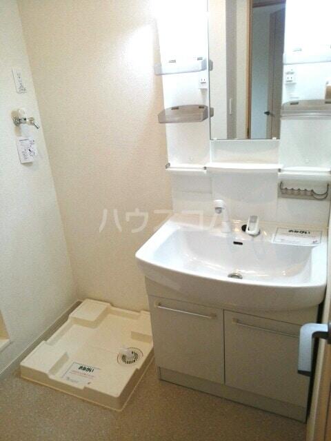 ラディエンスB 01010号室の洗面所