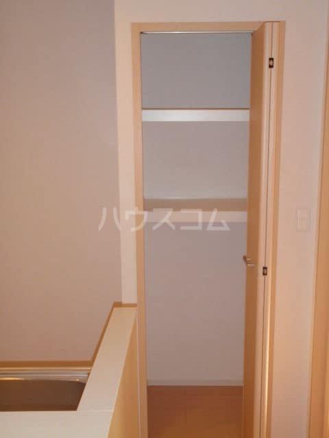 アルバーダ 01020号室の収納