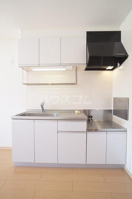 サニージェルメA 02010号室のキッチン