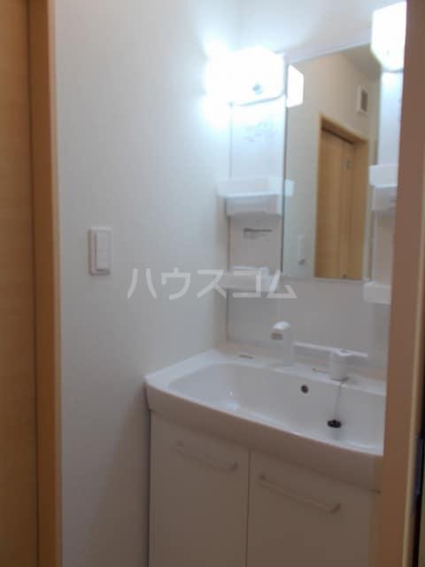 Cosmos Ⅱ 02010号室の洗面所