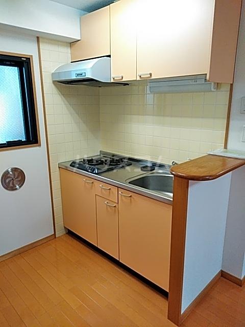 Primavera 202号室のキッチン