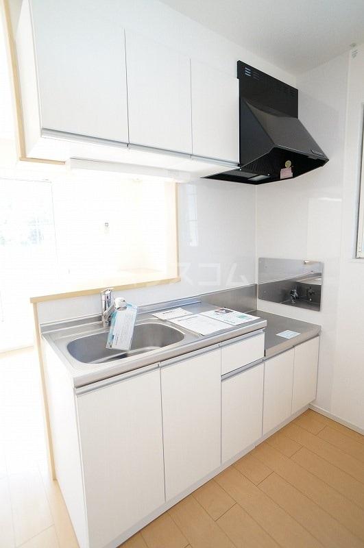 カーサ・プラシードA 02010号室のキッチン