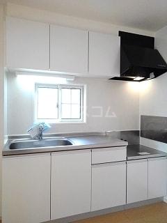 pure shine 01010号室のキッチン