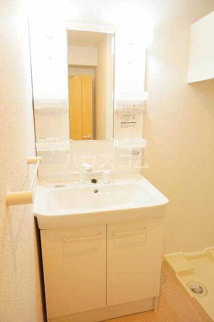 ルーベル太田B 02030号室の洗面所