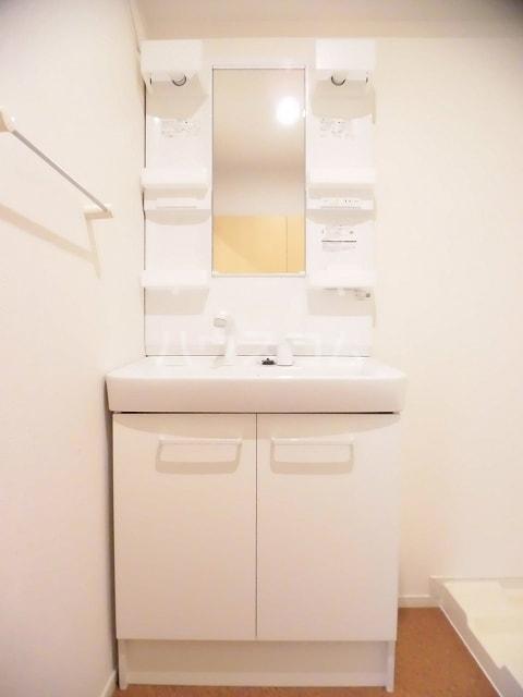ジュネス御茶園 02020号室の洗面所