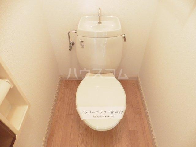 ドミール宮の下A 101号室のトイレ