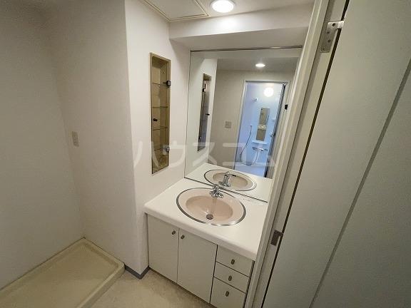 パーク・ノヴァ洗足池 407号室の洗面所