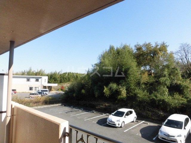 プリミエール山敷 303号室の居室