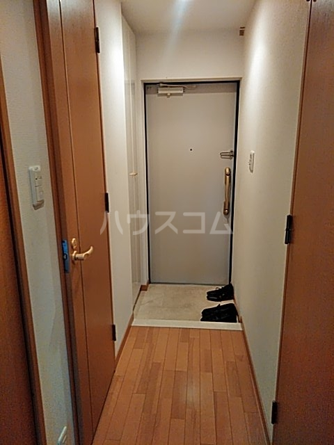セザールプラザ川崎 308号室の玄関