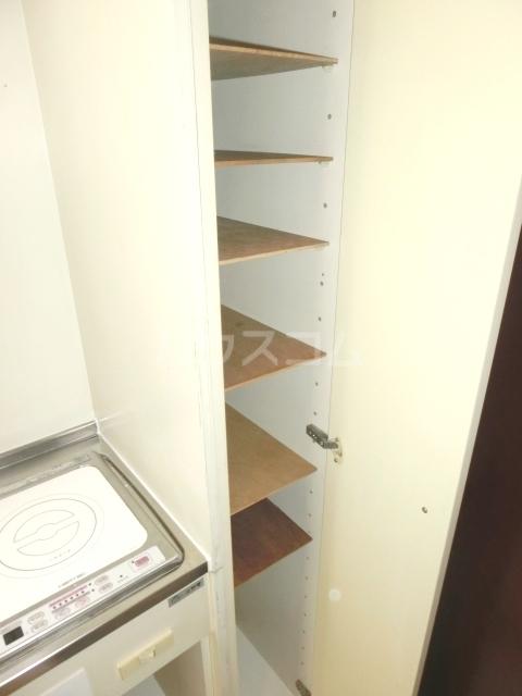 アムス谷塚 0208号室の収納